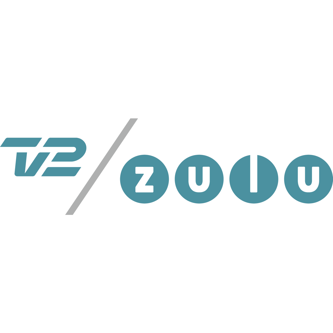 Profilo Tv2 Canale Tv