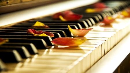 Профиль Beautiful Piano Music 24/7 Канал Tv