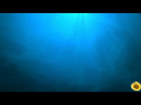 Profilo Deep Sea Relax Music Canale Tv