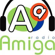 Amiga Calbuco Radio