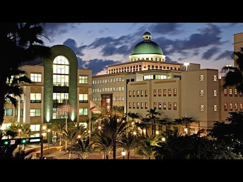 Профиль West Palm Beach TV Канал Tv