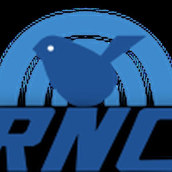 Radio Nichelino Comunità