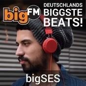 bigFMSES