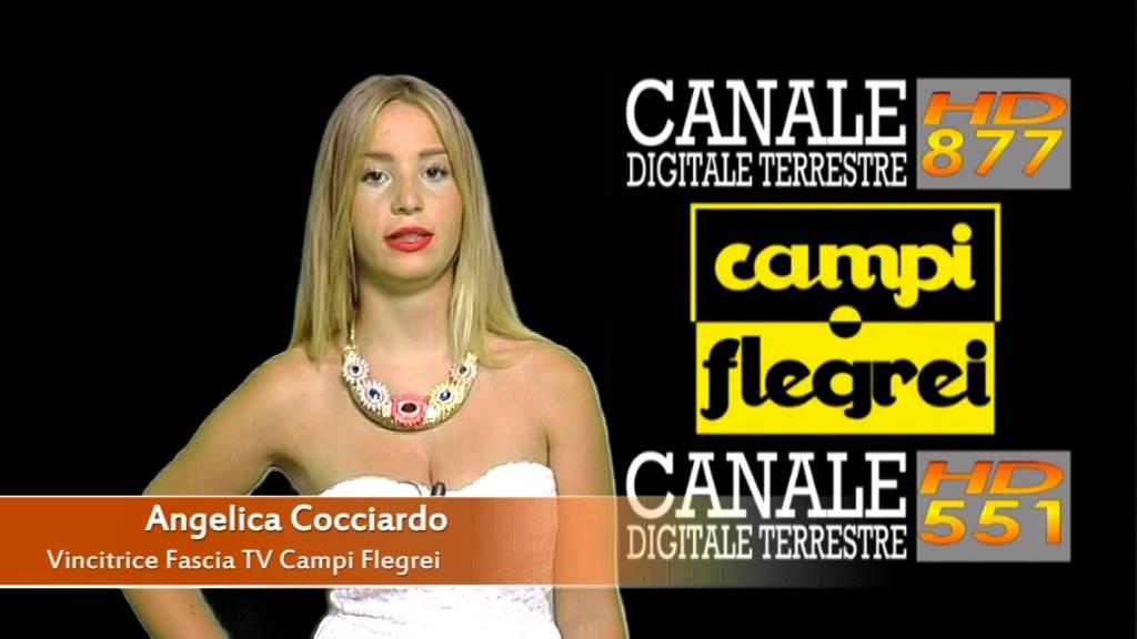 Profilo Campi Flegrei Tv Canale Tv