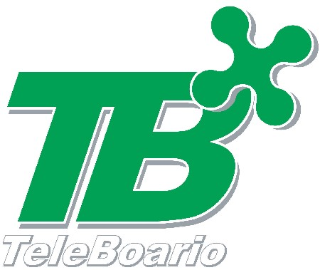 Profil TeleBoario Canal Tv