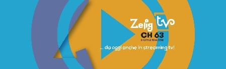 Profil Zelig Tv Canal Tv