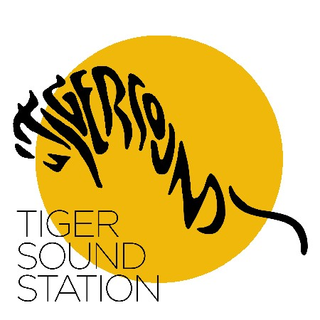 Tiger Sound Station
